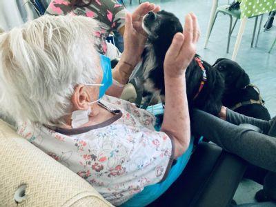 V kežmarskej nemocnici pomáhajú štvornohí liečitelia. Vďaka profesionálnej pomoci psíkov sa pacienti tešia aplikovanej zooantropológii
